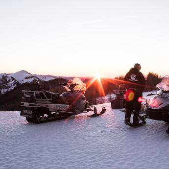 Snowmobile and quad